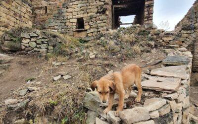 Dagestan Camp 2020 день 6. Все дороги ведут в Чох
